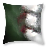 Natural Abstractions #5 The Crystal Dragonfly Throw Pillow