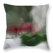 Natural Abstractions #6 Red Dragonflies In Sunlight Throw Pillow