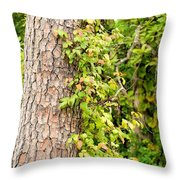 Natural Attachment Throw Pillow
