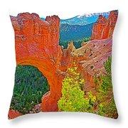Natural Bridge In Bryce Canyon National Park-utah  Throw Pillow