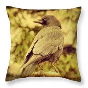 Natural Crow Throw Pillow