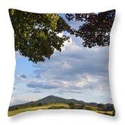 Natural Frame Throw Pillow
