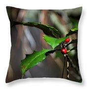 Natural Holly Decor Throw Pillow
