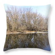 Natural Mirror Throw Pillow