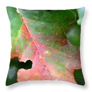 Natural Oak Leaf Abstract Throw Pillow