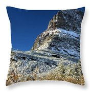 Natural Picture Frame Throw Pillow