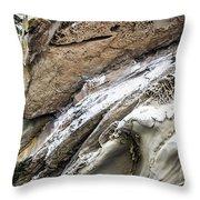 Natural Rock Art 2 Throw Pillow