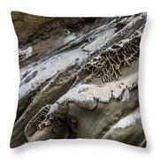 Natural Rock Art Throw Pillow