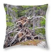 Natural Sculpture Throw Pillow