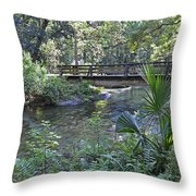 Natural Springs Throw Pillow