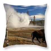 Natural Warmth Throw Pillow