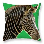 Natural Zebra Throw Pillow