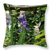 Naturally Sculptured Beauty Throw Pillow