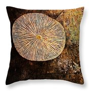 Nature Abstract 22 Throw Pillow