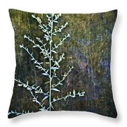 Nature Abstract 46 Throw Pillow
