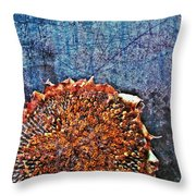 Nature Abstract 47 Throw Pillow