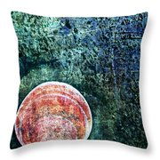 Nature Abstract 66 Throw Pillow