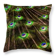 Nature Abstracts Throw Pillow