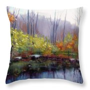 Nature Center Pond At Warner Park In Autumn Throw Pillow