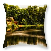 Nature Center Salt Creek In August Throw Pillow