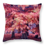 Nature Colors Throw Pillow