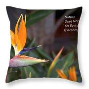 Nature Does Not Hurry Bird Of Paradise Throw Pillow
