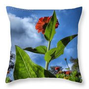 Nature Does Not Hurry Zinnia Standing Tall Throw Pillow