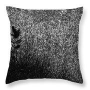 Nature  Forest Grass Throw Pillow