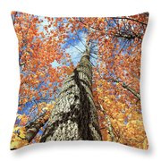 Nature In Art Throw Pillow