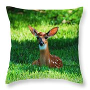 Nature In The Back Yard  Throw Pillow