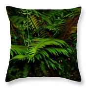 Nature In The Pacific Nw Throw Pillow