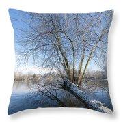 Nature Landscape Throw Pillow