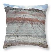 Nature Marking Time Throw Pillow