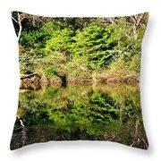 Nature Mirrored Throw Pillow