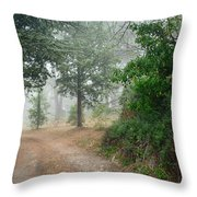 Nature Of Provence Throw Pillow