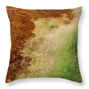 Nature Of Things Throw Pillow