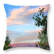 Nature Palette Throw Pillow