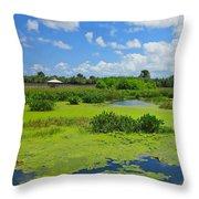 Nature Paradise Throw Pillow