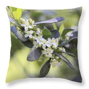 Nature Path Flower Throw Pillow