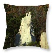 Nature Perfect Carving Throw Pillow