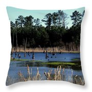 Nature Preserved 2 Throw Pillow