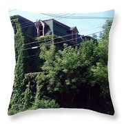 Nature Reclaims Throw Pillow