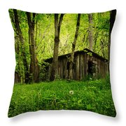 Nature Reclaims Throw Pillow