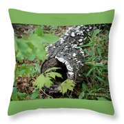 Nature Recycled Throw Pillow