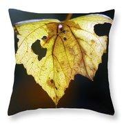 Nature Recycles Throw Pillow