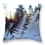 Nature Repeats Itself Throw Pillow