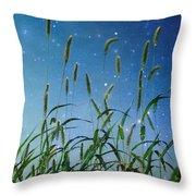 Nature Sparkles Throw Pillow