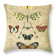 Nature Study-no.2 Throw Pillow