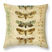 Nature Study-no.3 Throw Pillow
