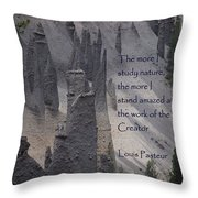 Nature Study Throw Pillow by Sharon Elliott